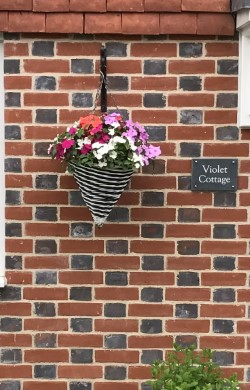 Image bright flowers in hanging basket with brick wall behind
